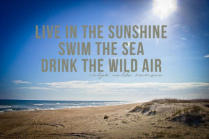 beaches quotes | Posted on July 24, 2012 by Christopher