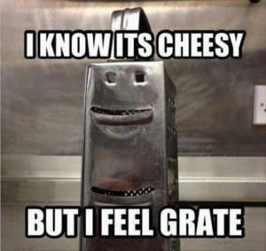 funny puns in pictures, dumpaday (5)