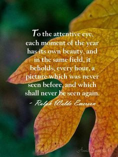 ... Emerson #nature #quotes https://www.facebook.com/pages/Blandford