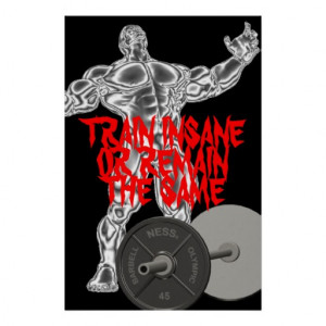 Motivational Train Insane Weightlifting Poster