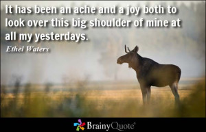 It has been an ache and a joy both to look over this big shoulder of ...