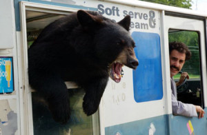 Borat and a bear in an ice cream truck.