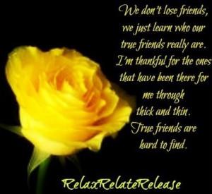 Rose true friend quote via www.Facebook.com/RelaxRelateRelease