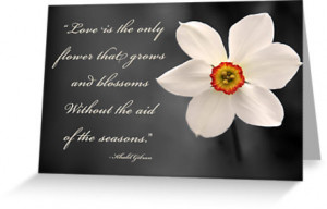American romanticism quotes wallpapers