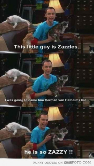 image/he-is-so-zazzy-funny-quotes-from-the-big-bang-theory-by-sheldon ...