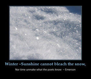 Snow Jokes Forwards Com Funny Emails Cute And Flower Tumblr Picture