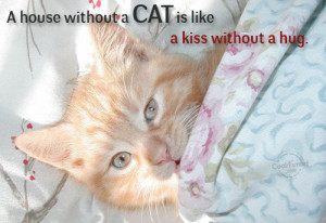 Cats Quote: A house without a cat is like... Cat- (2)