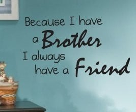 Little Brother Quotes Funny