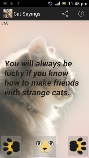 Related Pictures Cat Quotes Funny Clip Art Picture Ments Page