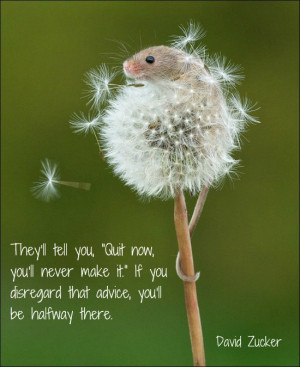 Monday Mojo ~ They'll Tell You....