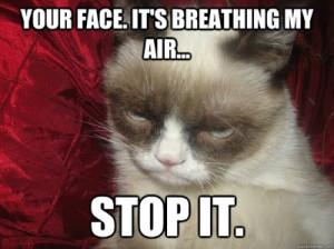 Grumpy Cat new photo