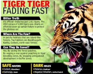 Image Courtesy: http://www.iprash.com/images/save-tigers.jpg