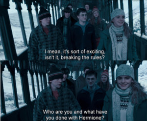 Related Pictures hermione granger quotes funny 4865644945673032 jpg ...