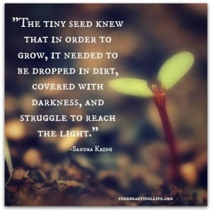 beautiful and touching quote about # growth
