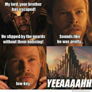 25 Funniest Thor & Loki Pictures