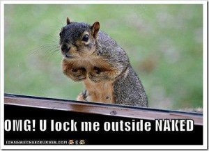 Funny quote about squirrels You lock me outside naked