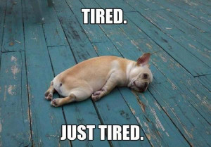 Tired. Just tired. - Image