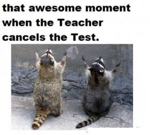 teacher canceled the exam - Image