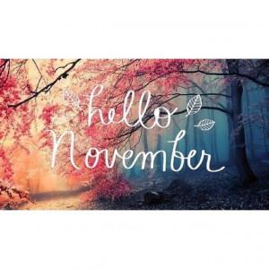 Hello November* (My birthday month!)