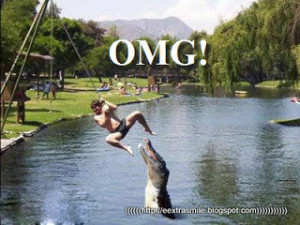 OMG..Where does Crocodile come from?...