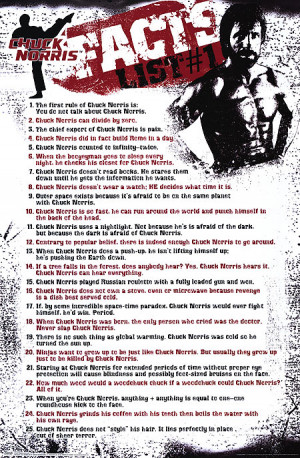 CHUCK NORRIS FACTS POSTER ]