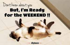 Ready For The Weekend Cats...