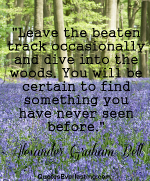 Leave the beaten track occasionally and dive into the woods