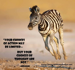 Law of Attraction, Choice Of Your Action And Thought quote, Zebra ...