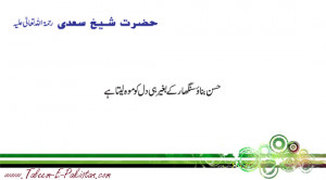hazrat sheikh saadi ra quotes famous quotes leave a comment 15 views ...