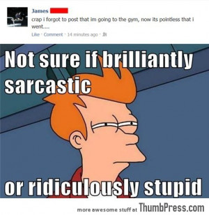 sarcastic quotes about stupid people