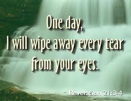 Study NIV Bible Verses,
