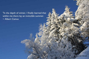 20 Best and Chilly Winter Quotes 6