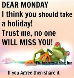 Happy Mondays, Funny Things, Funny Pictures, Mondays Blue, Fun Stuff ...