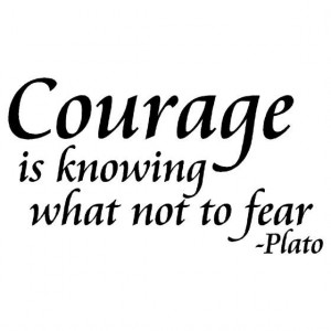 Plato, quotes, sayings, courage, best, meaning