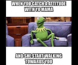 20 of the Best Snitching Kermit Memes from the Weekend