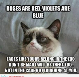 ... Red Violets Are Blue Faces Like Yours Belong In The Zoo - Animal Quote