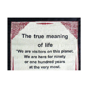 True Meaning Of Life Quotes