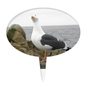 Funny Seagull Picture His Sayings Are Totally Customizable And Text