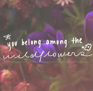 You belong among the wildflowers :]