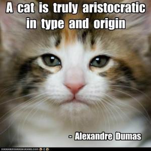 Famous Cat quotes that deserve a capshun!....