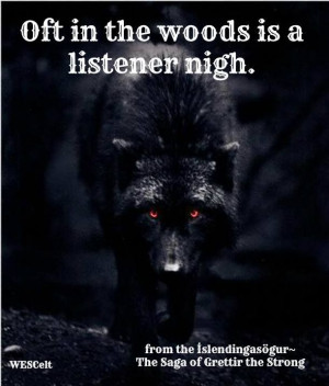 ... awareness is critical for any warrior #Norse #Viking #Wolf #Warrior
