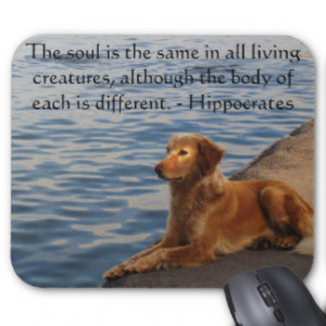 Animal Quotes Mouse Pads