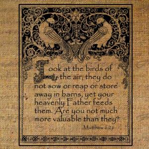 Look At the Birds Framed Bible Quote Bird Matthew 6 verse 26 Digital ...