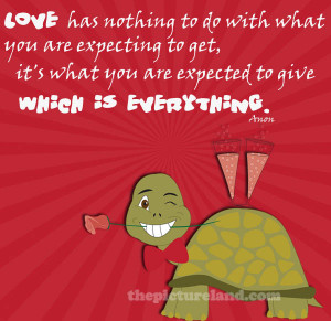 Love Sayings With Romantic Funny Turtle Pictures