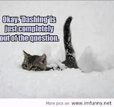 Funny Quotes About Snow Cute