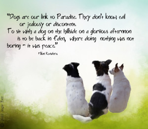 first in a series i will be creating featuring Dogs and dogs quotes ...
