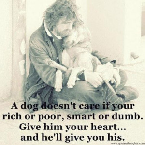 Nice love quotes care dog heart poor rich smart