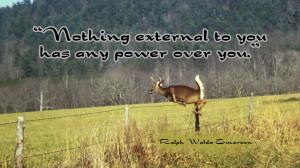 Funny Deer Hunting Sayings Deer quotes - quoteko.com