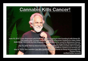 tommy chong on twitter tommy chong on cnn earlier in june 2012