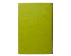 Обложка Barnes and Noble NOOK color Wren Quote Cover (Leaf)